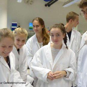 Bio-Kurs in Heidelberg 2017 2