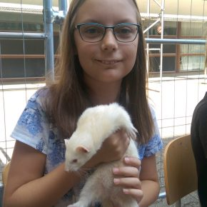 Elina mit einem Albino-Frettchen