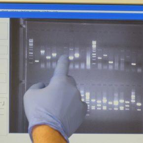 2018 Molekularbiologie mit Herrn Uhde 64