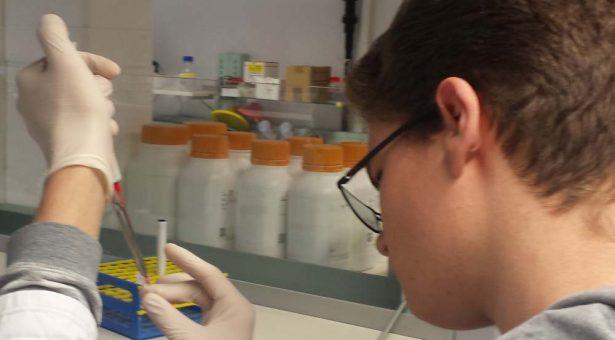 Schnupperkurs in die genetische Forensik